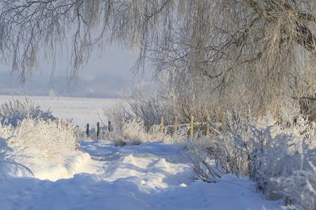 drifts: road through snow drifts,winter, frost, snow drifts, beautiful winter landscape