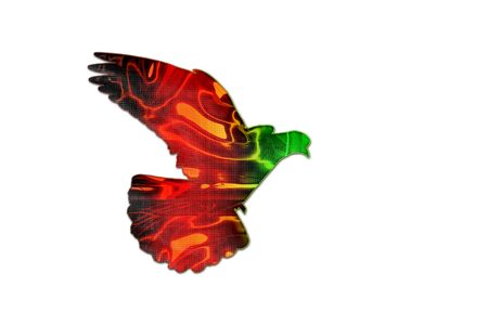 Afghan flag colors on the silhouette of the pigeon ,creativity, symbols and signs