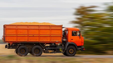truck carries grain on a country road, exclusive Stock Photo