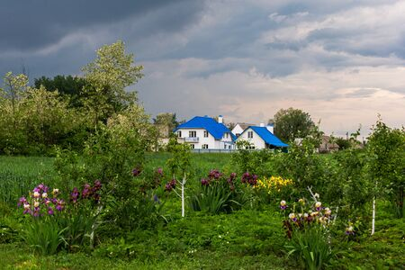 spring garden, beautiful houses and a stormy sky, wildlife in spring