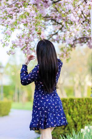 girl in a beautiful dress and sakura flowers, spring flowering Stock fotó