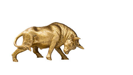 metal golden bull isolated on white background