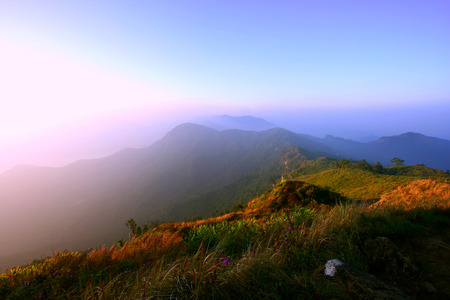 chiangrai: Mountain view in morning ,Phuchifa, Chiangrai,Thailand