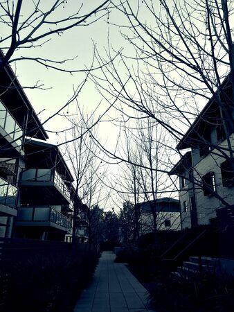 apartmant: The memory of winter