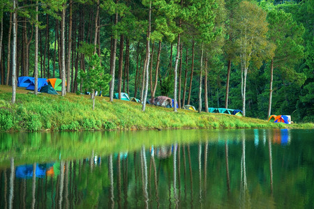 Pang-ung, pine forest park for relax in thailand photo