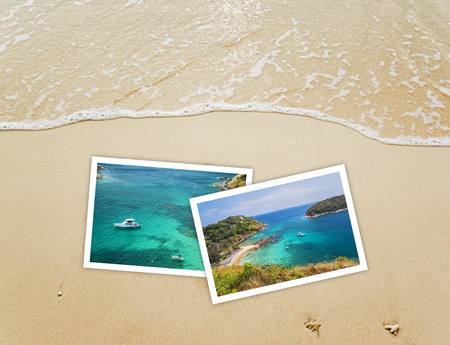 nature picture: Nature picture on sand background Stock Photo