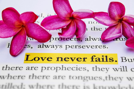never: Love never fails. 1Corinthians 13:8, Holy bible.