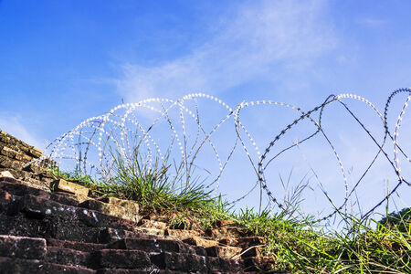 Rolled barbed wires for security zone photo