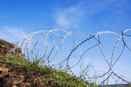 Rolled barbed wires on blue sky background  photo