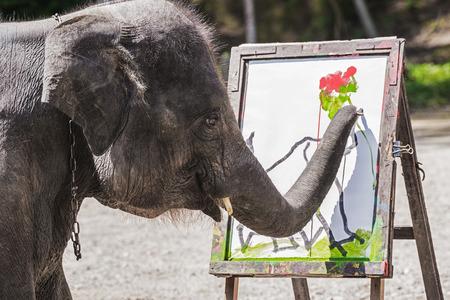 Elephant artist show painting