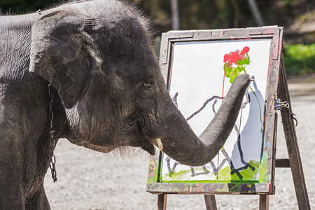 Elephant artist show painting Stock Photo - 30208298