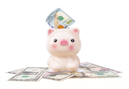 Piggy bank and dollars isolated on white background  photo