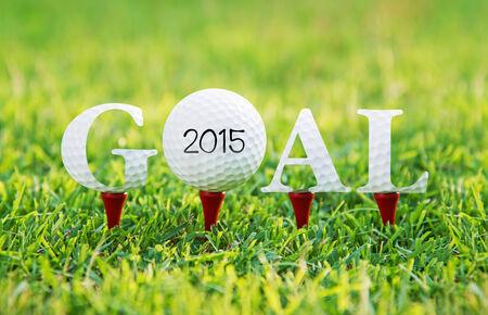Goal 2015 ,concept go to success photo