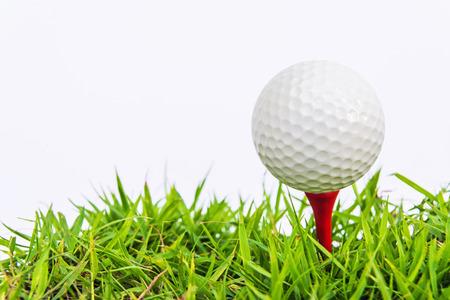 cut grass: Golf ball on green grass, selective focus Stock Photo