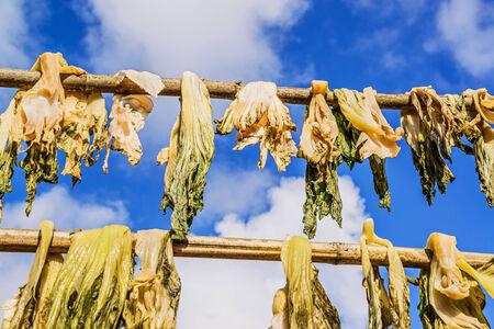 legumbres secas: Hortalizas secas contra un cielo azul Foto de archivo