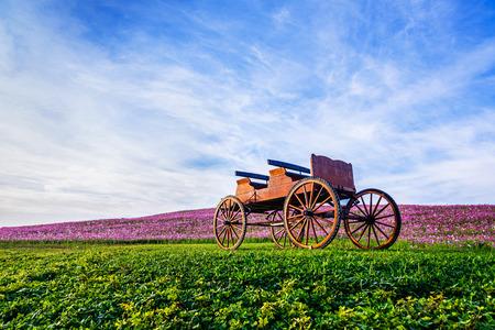 carreta madera: Carro de madera en el jard�n de flores para la decoraci�n.