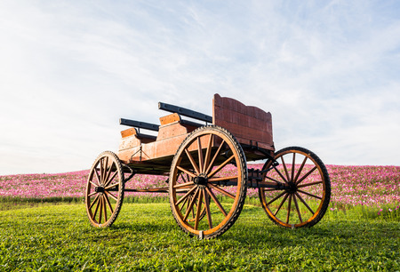 Wooden wagon in flower garden