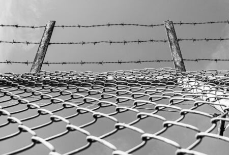 barbed wire fence: Fence with barbed wire Stock Photo