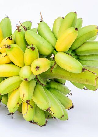unblemished: Ripe Pisang Mas banana or Musa :Kluai Khai, famous small golden