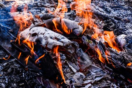 comfortableness: Burn fire with wood and legs