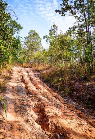 red soil: Red soil road damaged.