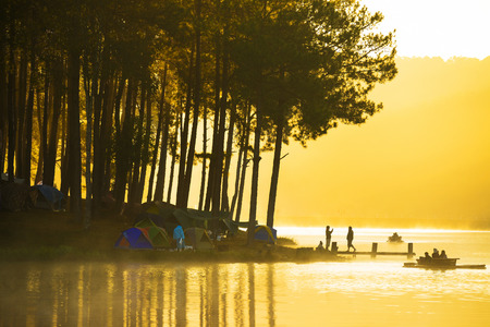 pang: sunrise at Pang-ung, pine forest park in thailand