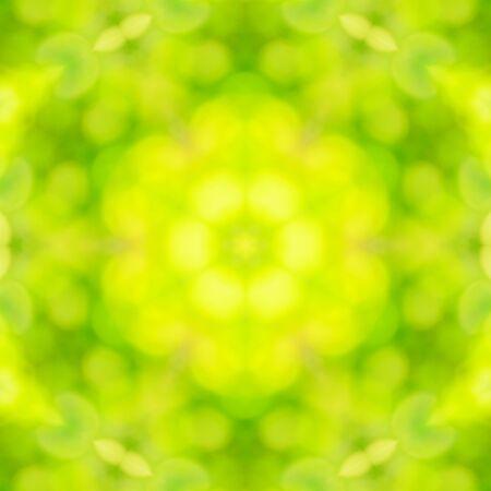 nature green: Resumen de antecedentes de desenfoque naturaleza bokeh verde.