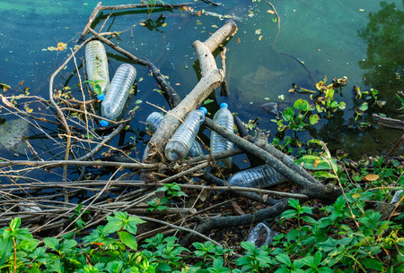 polluted river: Water pollution, empty plastic bottles. Stock Photo