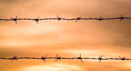 prison yard: silhouette of Barbed wire on sunset background