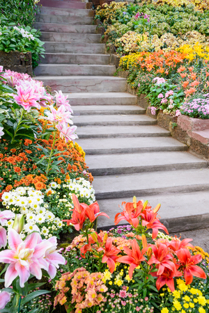 retain: Stairs in a beautiful flower garden