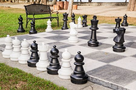 defeated: Chess board with chess pieces