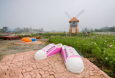 december 21: CHIANG MAI, THAILAND - DECEMBER 21:  Giant shoe at cosmos flowers field and wind turbine in the garden, Being decorated for tourism in winter, Chiang Mai ,Thailand in December 21, 2016.