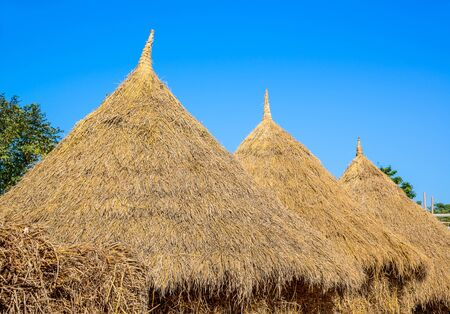 gamme de produit: Pile of dry rice straw in the rice field after harvest process in the farm.