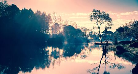 Tree silhouette with Reflection and the mist in morning in lake. with cross processing filter effect