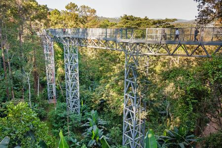 Chaing Mai, Thailand - February 08, 2017: People enjoying a walk on the canopy walkway in in Queen Sirikit Botanic Garden, Chiang Mai, Thailand.
