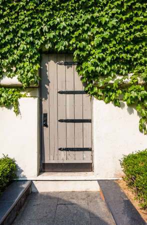 wooden door outside and ivy in a small town Stock Photo