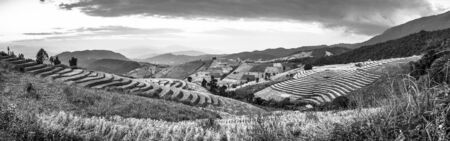 Panoramic view of Terraced Paddy Field in Pa Pong Pieng , Mae Chaem, Chiang Mai, Thailand. Black and white filter effect