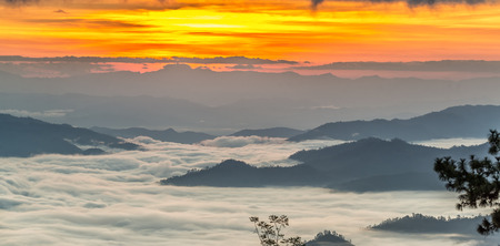 Misty daybreak. Foggy awakening in a beautiful hills, Fall morning mist. Peaks of hills are sticking out from foggy background.
