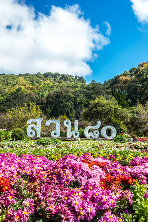 DOI ANG KHANG, THAILAND - DECEMBER 05, 2017 : Garden celebrates 80 years of king Bhumibol at Doi Ang Khang Royal Agricultural Station, Northern Thailand.