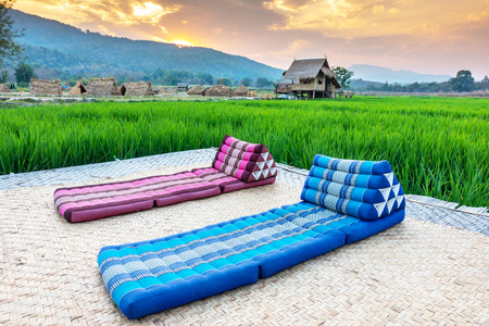 Relaxing couch in rice field, Comfortable bed in a green field.