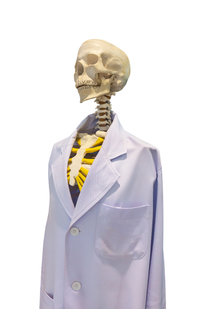 Skeleton dressed as a doctor on white background Stock Photo