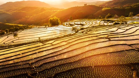 Aerial drone shot of sunset at Terraced Paddy Field in Mae-Jam Village , Chaing mai Province , Thailand. Top view Pa Pong Piang rice field. Stock Photo
