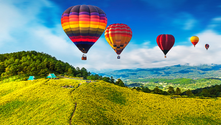 Colorful hot air balloons flying over Mexican sunflower Field, Mae Hong Son Province, Thailand. Stock Photo