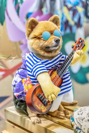 Dog wearing sun glasses and guitar.  Summer Holidays concept. Banque d'images - 119633835