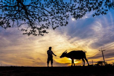 Silhouette Thai buffalo and farmer man in sunset, Nakhon Si Thammarat, Thailand