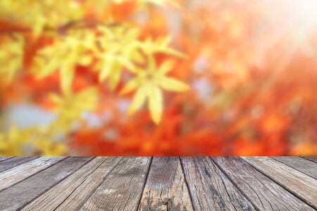 Wooden table and autumn maple leaves blur background
