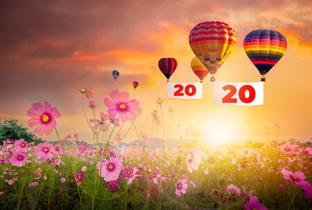 2020 New Year and hot air balloons on sunset sky with cosmos flowers in blooming  background.