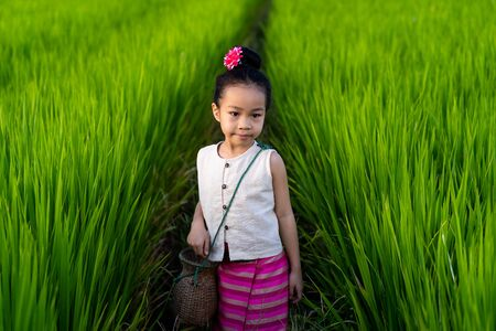 Asian girl in rice field with countryside background Imagens - 131127997