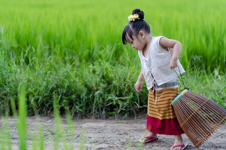 Asian girl with fishing equipment in rice field with rural background Imagens - 131128006