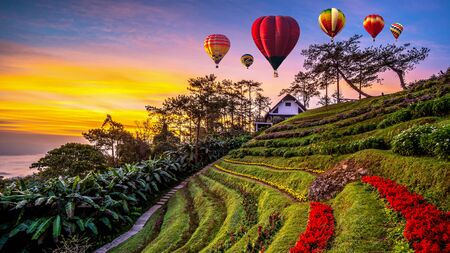 Colorful hot air balloons  flying at sunrise in winter Imagens - 131132507